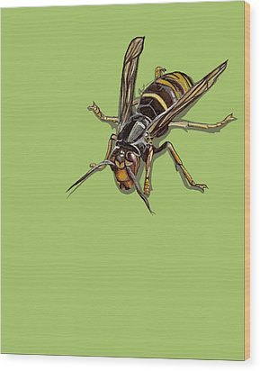 Wood Print featuring the painting Hornet by Jude Labuszewski