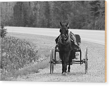 Wood Print featuring the photograph Horse And Buggy by Marjorie Imbeau