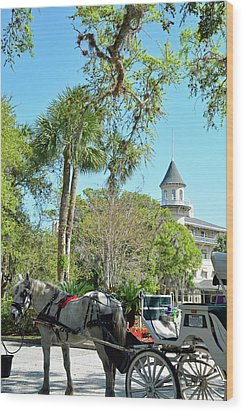 Horse And Carriage At Jekyll Island Club Hotel Wood Print by Bruce Gourley