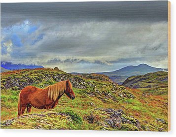 Wood Print featuring the photograph Horse And Mountains by Scott Mahon