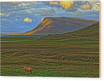 Wood Print featuring the photograph Horse And Sky by Scott Mahon