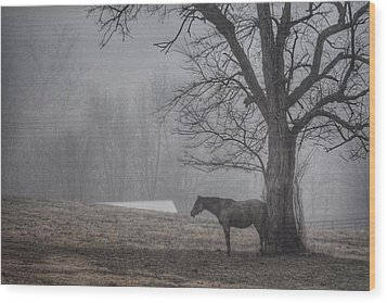 Horse And Tree Wood Print