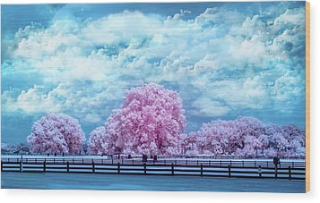 Wood Print featuring the photograph Horse Country In Pink by Louis Ferreira