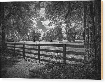Wood Print featuring the photograph Horse Country by Louis Ferreira