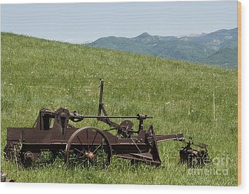 Wood Print featuring the photograph Horse Drawn Ditch Digger by Daniel Hebard