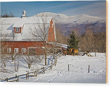 Horse Farm And Mount Mansfield Wood Print by Susan Cole Kelly