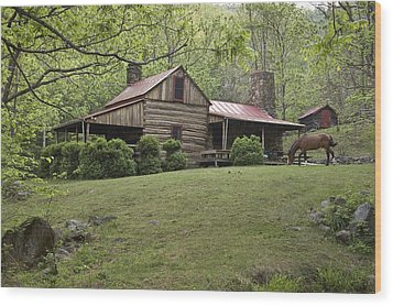 Horse Grazing In The Yard Of A Mountain Wood Print by Greg Dale