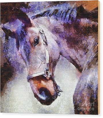 Horse I Will Follow You Wood Print