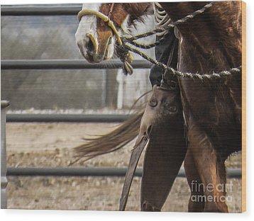 Horse In Hackamore Wood Print