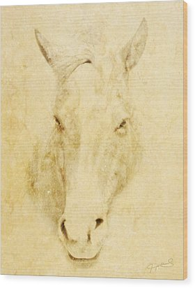 Horse  Wood Print by Jeremy Martinson