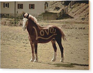 Horse Love Wood Print by Trish Tritz