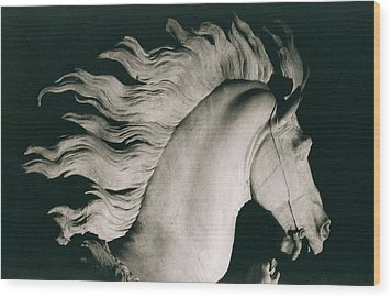 Horse Of Marly Wood Print by Coustou