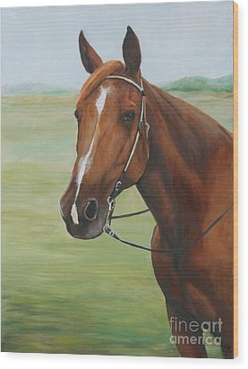 Horse Portrait Wood Print by Charlotte Yealey