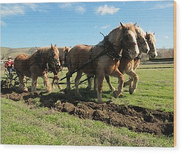 Wood Print featuring the photograph Horse Power by Jeff Swan