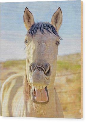 Horse Talk #2  Wood Print