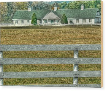 Horseland Wood Print by David Bearden