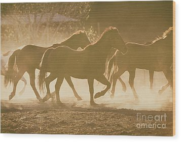 Wood Print featuring the photograph Horses And Dust by Ana V Ramirez