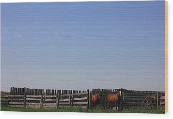 Horses - Corrals - And Alberta Prairie Sky Wood Print by Jim Sauchyn