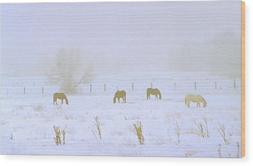Horses Grazing In A Field Of Snow And Fog Wood Print by Steve Ohlsen