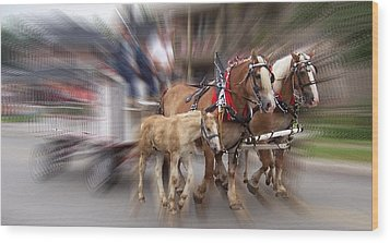 Horses In Motion Wood Print by David and Lynn Keller