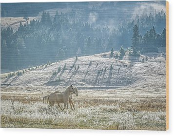 Horses In The Frost Wood Print