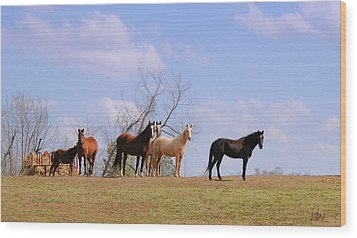 Wood Print featuring the photograph Horses On The Hill by Bonnie Willis