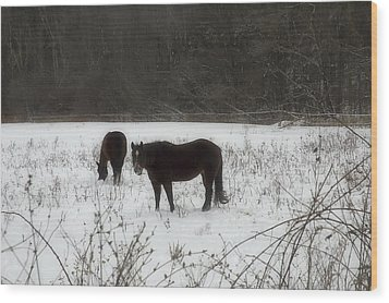 Horses Two Wood Print by Ross Powell