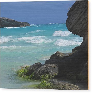 Horseshoe Bay Rocks Wood Print