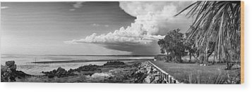 Wood Print featuring the photograph Horseshoe Beach by Howard Salmon