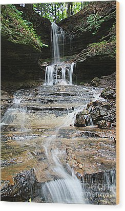 Horseshoe Falls #6735 Wood Print