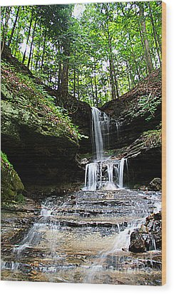 Horseshoe Falls #6736 Wood Print by Mark J Seefeldt