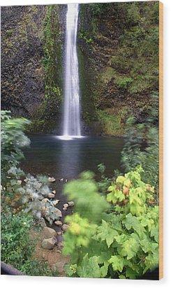 Horsetail Falls Basin Wood Print by Marty Koch