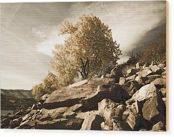 Horsetooth Reservoir 4 Wood Print by Matthew Angelo