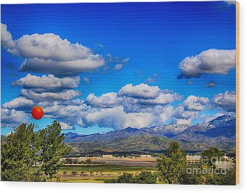 Hot Air Balloon Ride In Orange County Wood Print by Mariola Bitner