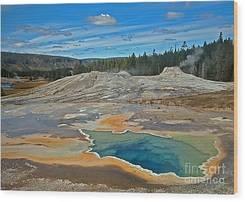 Hot Spring Wood Print by Robert Pilkington