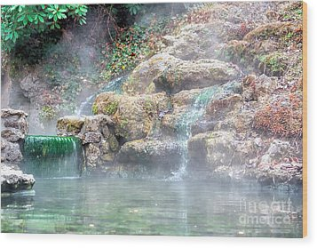 Wood Print featuring the photograph Hot Springs In Hot Springs Ar by Diana Mary Sharpton