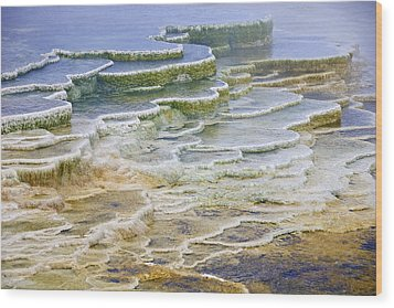 Wood Print featuring the photograph Hot Springs Runoff by Gary Lengyel