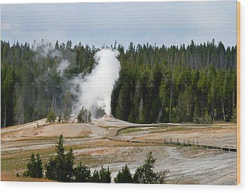 Hot Steam Dog Yellowstone National Park Wy Wood Print by Christine Till