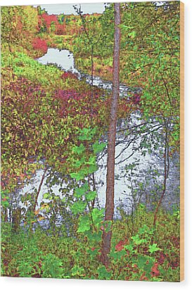Housatonic River 2 - New England Wood Print by Steve Ohlsen