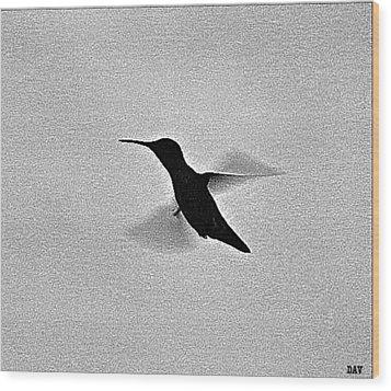 Hover Of The Hummingbird Wood Print by Debra     Vatalaro
