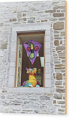 Wood Print featuring the photograph How Much Is That Dragon In The Window by John Schneider