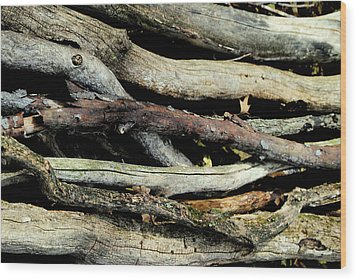 How Much Wood Would A Woodchuck Chuck Natural Wood Pile Ledge Park Wisconsin Wood Print by Laura Pineda