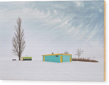 Wood Print featuring the photograph How To Wear Bright Colors In The Winter by John Poon
