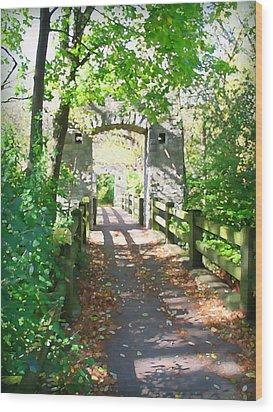 Hoyt Park Footbridge Vertical Wood Print
