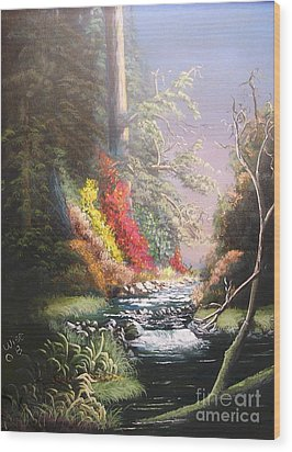 Huckleberry Creek Wood Print by John Wise