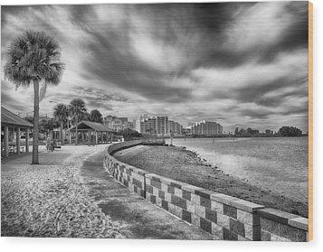 Wood Print featuring the photograph Hudson Beach by Howard Salmon