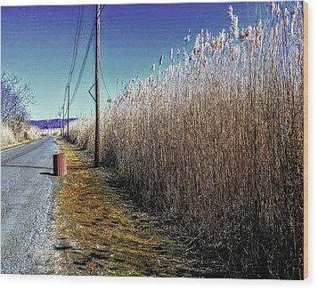 Hudson River Winter Walk Wood Print