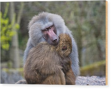 Wood Print featuring the photograph Hug Me by Scott Carruthers