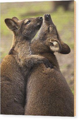 Hugs Wood Print by Mike  Dawson