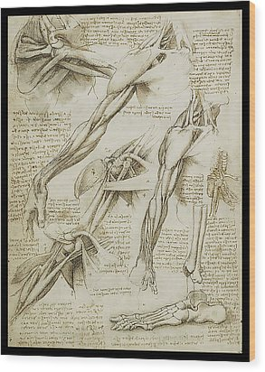 Wood Print featuring the painting Human Arm Study by James Christopher Hill